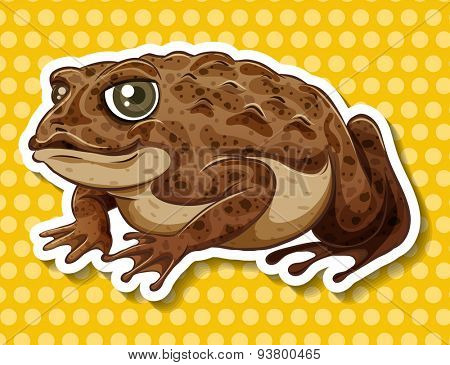 Brown frog on yellow polka dot background