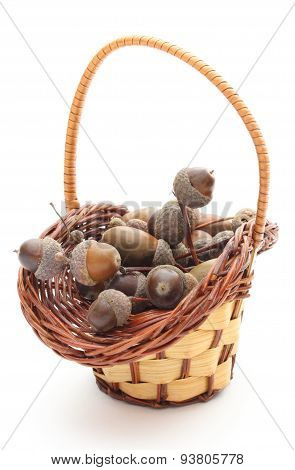 Acorns In A Wicker Basket On White Background