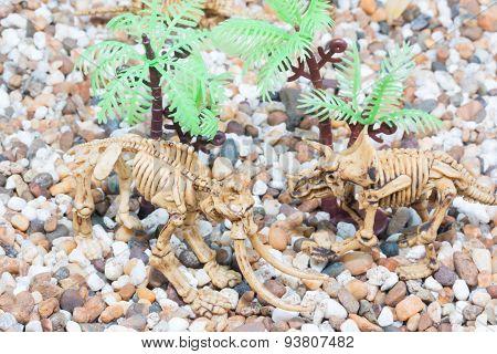 Dinosaur toy Skeleton