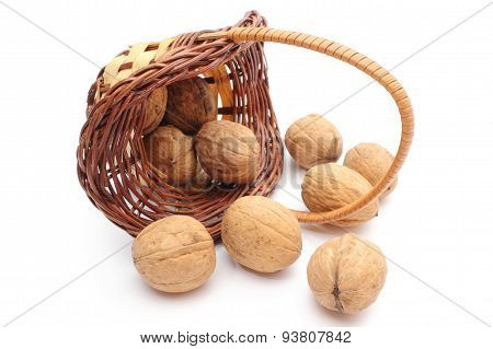 Overturned Wicker Basket With Walnuts On White Background