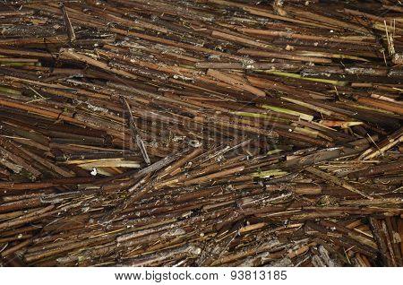 Reed bars