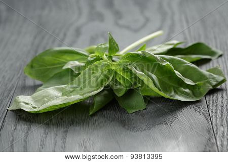 fresh green basil leaves on wooden table