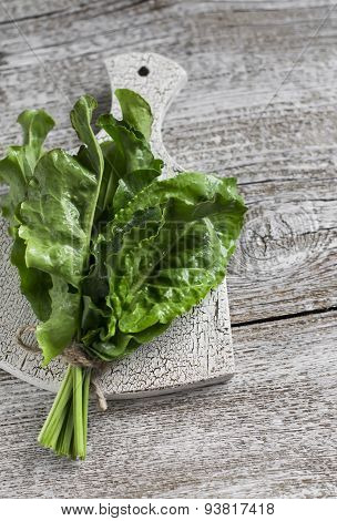 Fresh Sorrel On A Light Wooden Surface