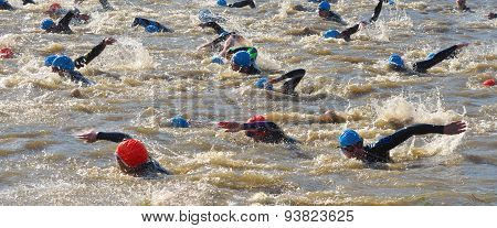 Triathlon competitors at swimming stage in the river Ouse