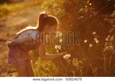 Little Girl Smelling A Wild Flower