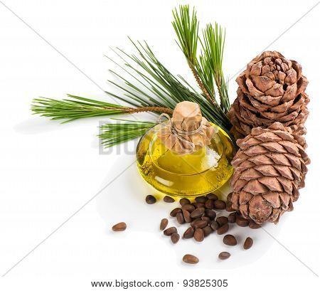 Cedar Pine Oil