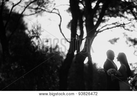 Black And White Photograph Of Bride And Groom Silhouettes