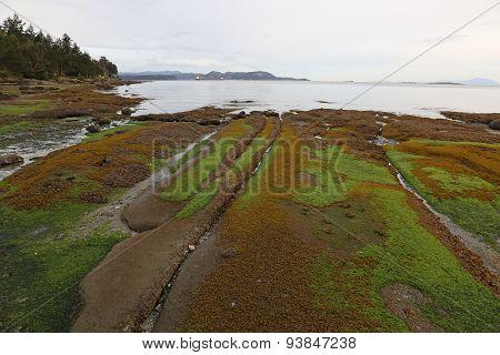 Gabriola Island Coast