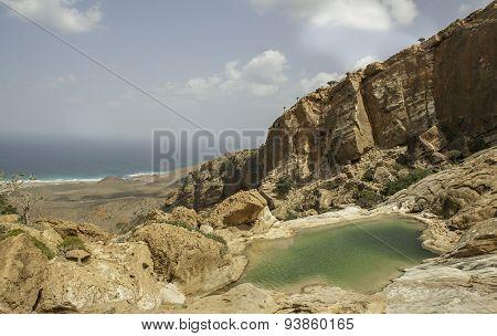 Dihamri Marine Protected Area, Socotra Island, Yemen,
