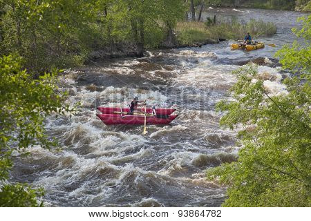 FORT COLLINS, COLORADO, USA - JUNE 4, 2011: White water rafter enjoys springtime snow melt when floating over Mad Dog Rapid on Cache la Poudre River west of Fort Collins.