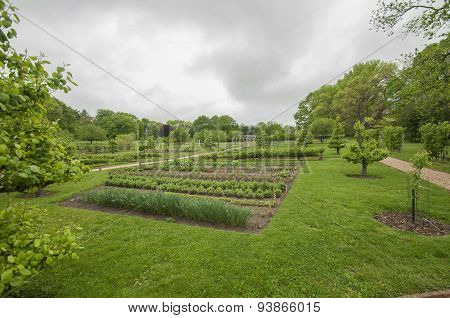 Colonial Kitchen Garden