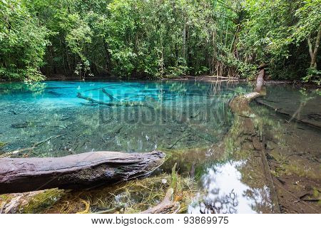 Emerald blue natural pool lagoon