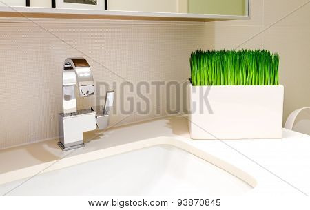 White bathroom sink. Elegant, polished and clean sink with grass plant vase decoration.
