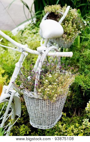 Old Bicycle Ideas For Gardening