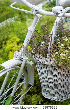 White Basket With Flowers Hanging On Old Bicycle In Garden
