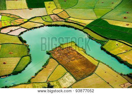 Rice field in valley in Bacson, Langson, Vietnam