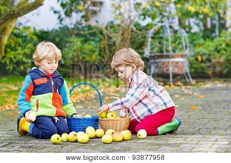 Two Adorable Little Twin Kids Picking Apples