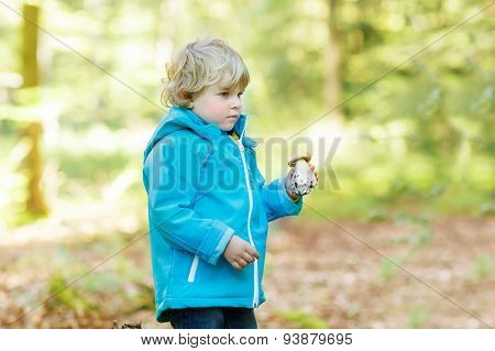 Cute Toddler  Boy In Blue Waterproof Raincoat In Autumn Forest