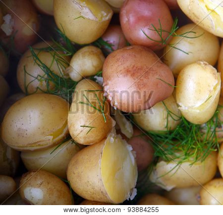 Colorful Potatoes.