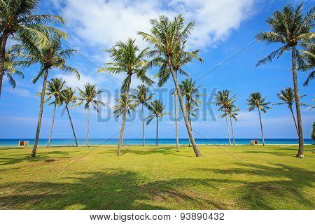 View Of Tropical Beach In Thailand