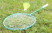 stock photo of shuttlecock  - Badminton racket and badminton shuttlecock on grass in summer park  - JPG