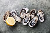 picture of pearl-oyster  - Opened Oysters on stone slate plate with lemon - JPG