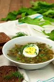 picture of sorrel  - Fresh organic green soup with sorrel and egg vertical - JPG