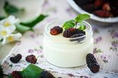 foto of mulberry  - sweet delicious home made yogurt with mulberry - JPG