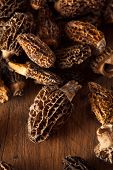 image of morel mushroom  - Raw Organic Morel Mushrooms Ready to Cook - JPG