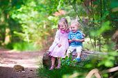stock photo of little young child children girl toddler  - Kids watching a hedgehog - JPG