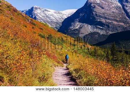 Autumn view in Glacier National Park, Montana, United States