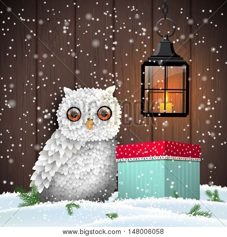 Cute white owl with colorful christmas gift box and shining lantern, in front of dark brown wooden wall, holiday theme, vector illustration, eps 10 with transparency