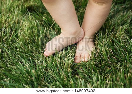 Baby Standing Barefoot On The Grass