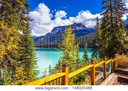 Wooden fence on the lake promenade. Camping and coniferous forest. The concept of eco-tourism