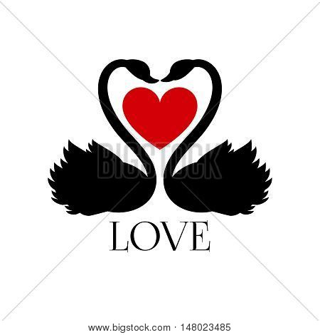 Two loving swans with heart on white background. Vector concept banner love with swans bird, illustration red heart with couple swans