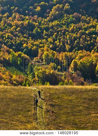 Autumn forest colors at rolling hills of Zeljin mountain, Serbia