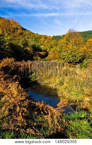 Small pond at colorful autumn scene with forest at rolling hills of Zeljin mountain, Serbia