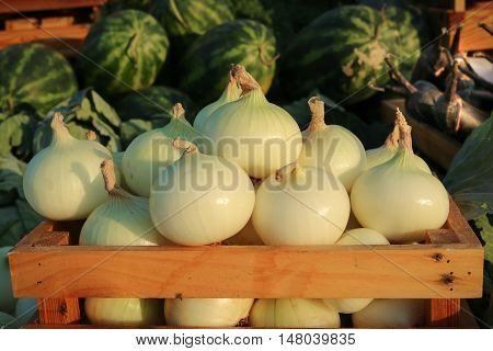 Onion in wooden crate with watermalon and eggplant