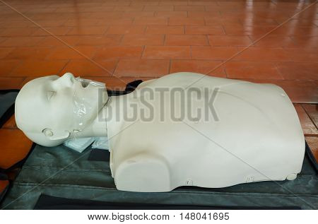 Emergency training model is equipment for training CPR.
