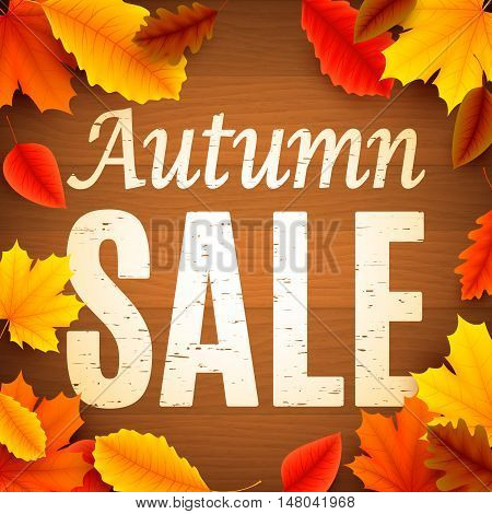 Autumn sale anouncement painted on old wood background decorated with color leaves