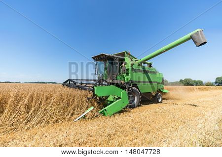 Working combine harvester during harvest of oat