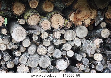 Firewood background. Chopped dry firewood on a stack.