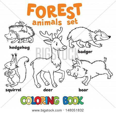 Coloring book set of funny hedgehog, squirrel, bagger, boar and deer. Children vector illustration. Forest animals