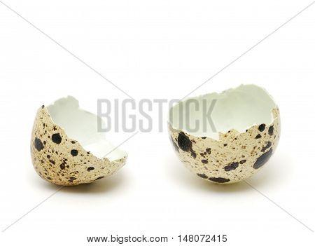 Quail eggshell isolated on the white background