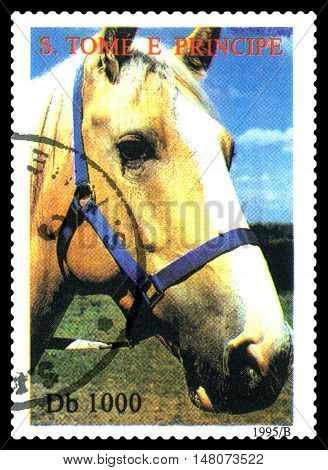 STAVROPOL RUSSIA - SEPTEMBER 18.2016: A stamp printed in Sao Tome and Principe shows Horse series Greenpeace circa 1995