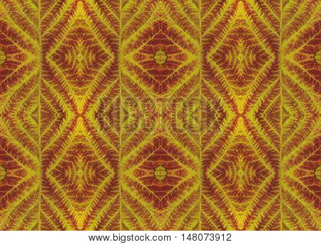 Leaves textures colorful pattern background for scrapbook top view. Collage with mirror reflection. Seamless kaleidoscope montage for cushion blanket pillow plaid tablecloth cloth bed cloth