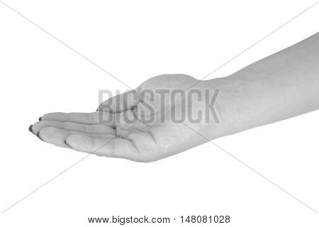 Palm up showing anything middle-aged woman's skin black manicure. Isolated on white background.