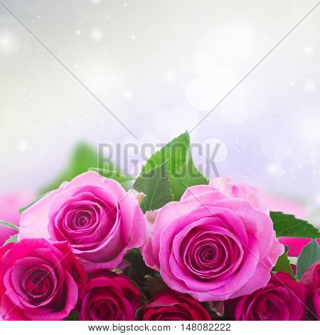 bouquet of pink and magenta roses closeup border with copy space on gray bokeh background