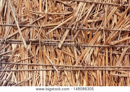Closeup of a straw bale with compressed straw background. Straw bale