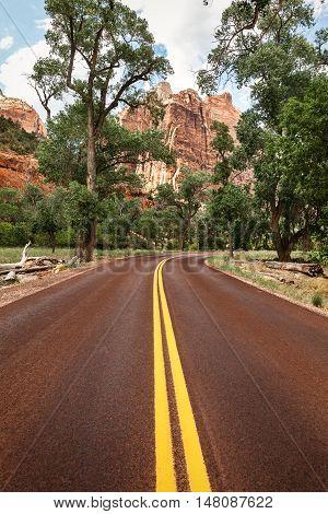 The road through Zion National Park Utah USA